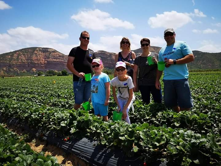 Mooihoek Strawberry Farm