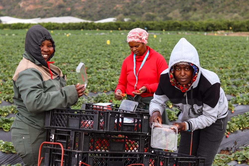 Mooihoek Staff